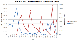 graphing and interpreting zebra mussel data cary institute of