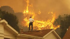 California Wildfire Cat by California Governor Declares Wildfire Emergency The Planet