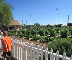 Vegetable Garden Blogs by Children In Nature At The San Antonio