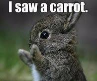 Easter Funny Memes - easter funny memes pictures photos images and pics for facebook