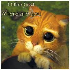 Missing Someone Meme - 15 i miss you memes sweetytextmessages