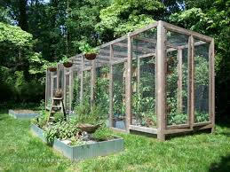 squirrel proof wood structure for suburban gardening greenhouse