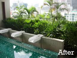 indoor planting tropical planting in indoor pool garden bangkok thai garden design