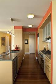 new york burnt orange paint color basement traditional with