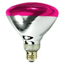 Colored Outdoor Light Bulbs Colored Outdoor Light Bulbs Led Flood Bulb Therav Info