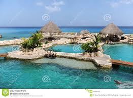 Cozumel Map Dolphinarium In Cozumel Mexico Stock Photo Image 14829700