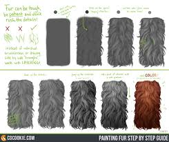short and long fur cg cookie