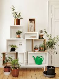 endearing ideas for indoor potted plants design best ideas about