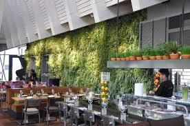 living indoor green wall vertiss plus bar indoor green walls