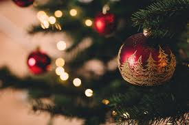 Pretty Christmas Trees Decorated With Presents Christmas Images Pexels Free Stock Photos