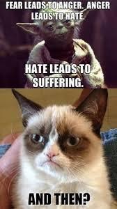 Grumpy Cat New Years Meme - pin uživatele minttu na nástěnce here pinterest