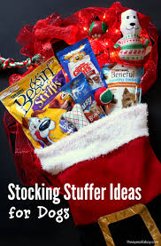 Stocking Ideas by Holiday Stocking Stuffer Gift Ideas For Dogs The Eyes Of A Boy