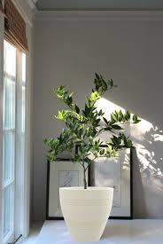 42 best artificial plants images on pinterest artificial plants