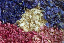 where can i buy petals delphinium petal confetti premium quality daisyshop