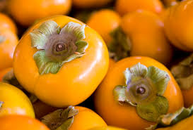 How To Grow Persimmons In Your Backyard Extension Daily
