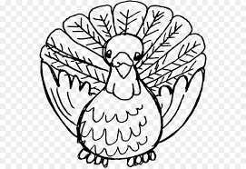 black turkey thanksgiving dinner pilgrim clip turkey bird png