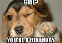 Redneck Meme Generator - fancy redneck birthday meme happy birthday kelsey redneck meme
