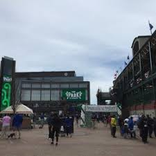 cubs open park at wrigley bleed cubbie blue