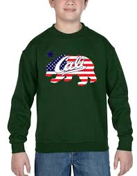 Flag Sweater Cali Bear American Flag Youth Crewneck California State Souvenir