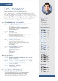 Resume Doc Template Fashionable Inspiration Resume Template Doc 6 Beautifully Idea 9