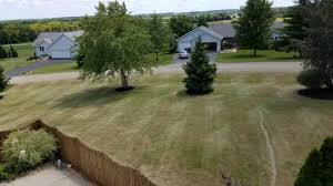 bewitched house pete1313 reel mowed bewitched kentucky bluegrass renovation page