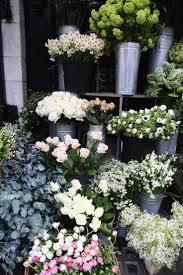 Flower Shops by 164 Best Flower Shops U0026 Displays Images On Pinterest Flower
