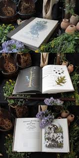 587 best wiccan aesthetic images on pinterest aesthetics