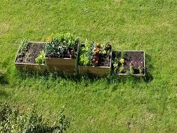 flower garden in amsterdam urban gardening in amsterdam expat republic