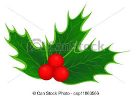 vector of traditional christmas holly leaves and berries