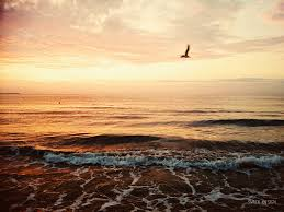 free images beach sea coast water ocean horizon cloud sky