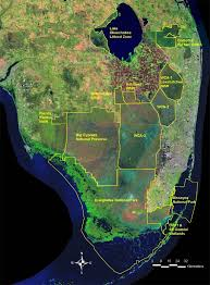 Florida vegetaion images Sofia vegetation classification for south florida natural areas jpg