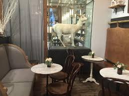 the paris market amy spearing interiors