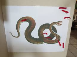 pin the tongue on the snake game snake party game i u0027m linking
