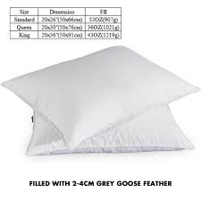 Bed Bath And Beyond Feather Bed Topper Amazon Com Puredown White Goose Feather And Down Pillow Queen
