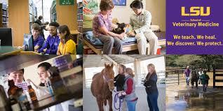 Lsu Union Help Desk by Of Veterinary Medicine