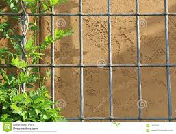 vine on trellis arbor stucco background stock photo image 44508202