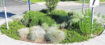 commercial property watering services for exterior planters and
