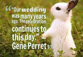wedding celebration quotes top 60 images about wedding quotes and marriage quotes