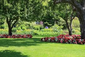 lawn care landscape design yard service spring tx