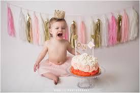 baby 1st birthday smash cakes tampa newborn photographer tampa