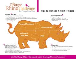 resources the orange rhino challenge