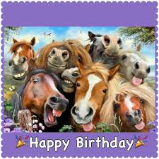 Horse Birthday Meme - horse saying happy birthday 17 best ideas about birthday