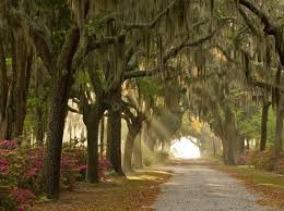 Most Beautiful Cities In The Us 171 Best Beautiful Sights Images On Pinterest British Royals