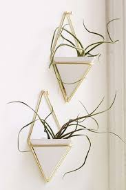 our favourite indoor planters