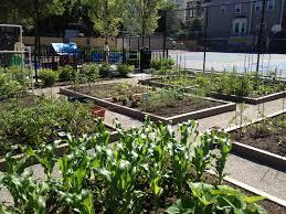 urban gardening streamrr com