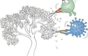 archaea and the tree of