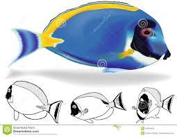 powder blue powder blue tang set stock vector image 54694435