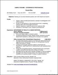 It Professional Sample Resume by Examples Of Resumes 89 Astounding Professional Resume Sample