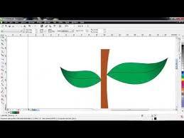 tutorial membuat undangan dengan corel draw 12 cara membuat daun di corel draw belajar corel draw pinterest