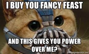 Fancy Feast Meme - i buy you fancy feast and this gives you power over me bane cat
